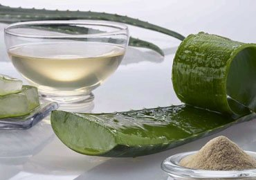 Top 10 Aloe Vera Juice Benefits for Your Overall Health!