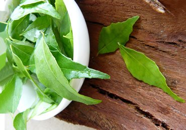 Curry Leaves Benefits : Why Eat Curry Leaves Rather Than Throwing It Out?