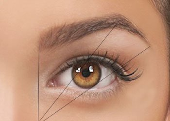 Thickness of Your Eyebrows