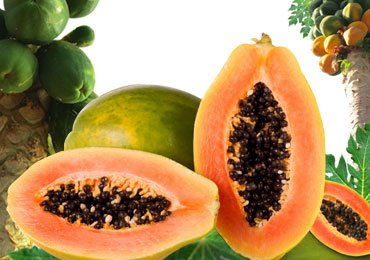 Benefits of Papaya that We Should be Aware of !