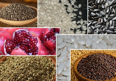 Seeds Health Benefits : 7 Super Seeds That Can Change Your Life!