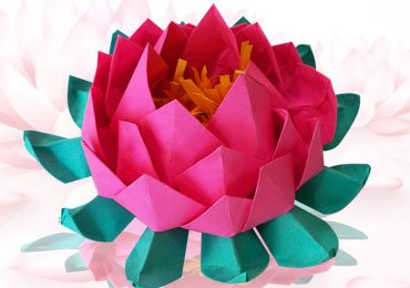 How to Make a Beautiful Origami Lotus in Just a Few Minutes?
