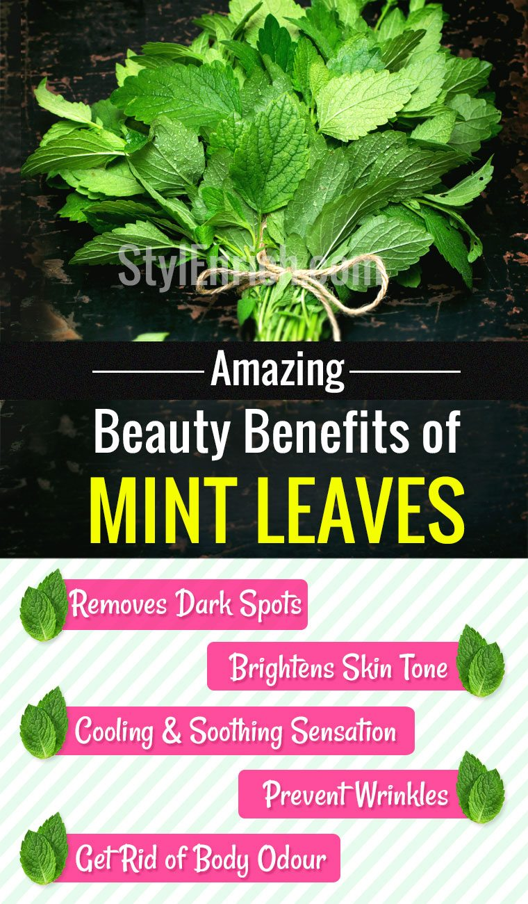 Benefits-of-mint-leaves