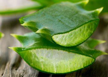 Aloe-vera-skin-tightening-home-remedies
