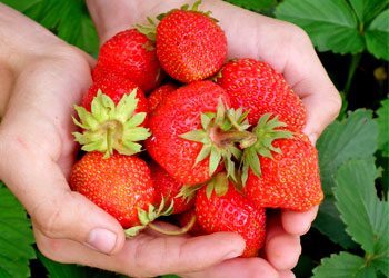 Strawberry-skin-tightening-home-remedies