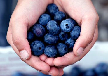 Do You Know About Blueberries Nutrition and Its Amazing Health Benefits?