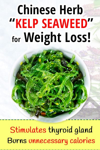 Kelp Seaweed For Weight Loss