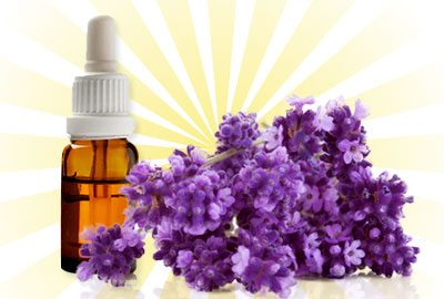 Lavender-oil-for-hair-growth