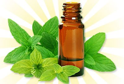 Peppermint-oil-for-hair-growth