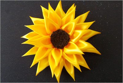 Satin sunflower