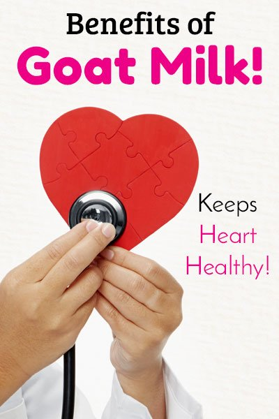 Goat Milk for Heart Health