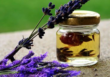 Know About the Benefits of Using Lavender Oil in Your Daily Routine!