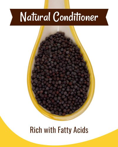 Mustard Hair Mask As A Natural Conditioner