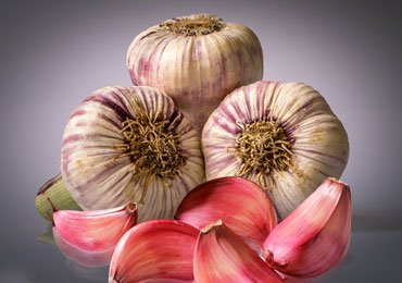 Amazing Health Benefits of Garlic for Weight Loss!