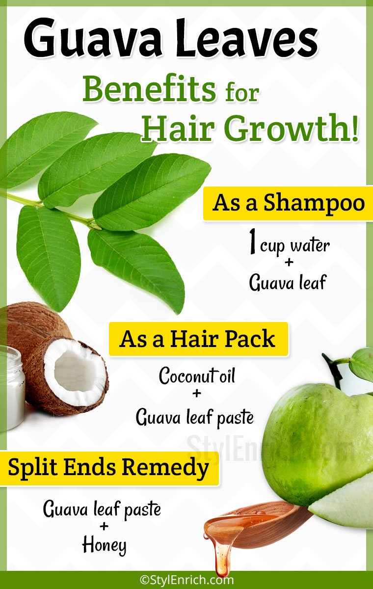 Guava Leaves for Hair Growth