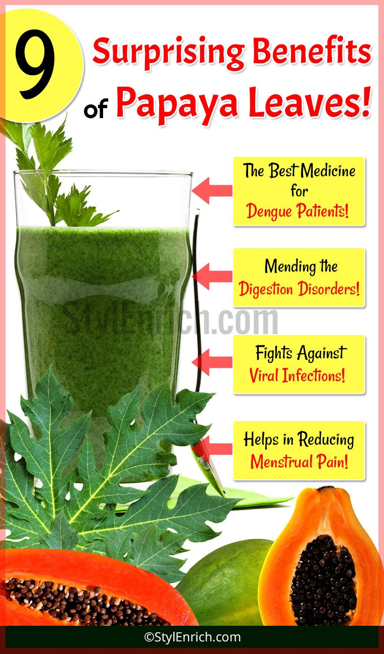 Papaya Leaves Juice Benefits