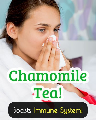 Chamomile Tea Boosts The Immune System
