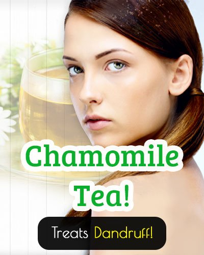 Chamomile Tea Treatment From Dandruff