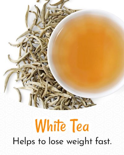 White Tea For Weight Loss
