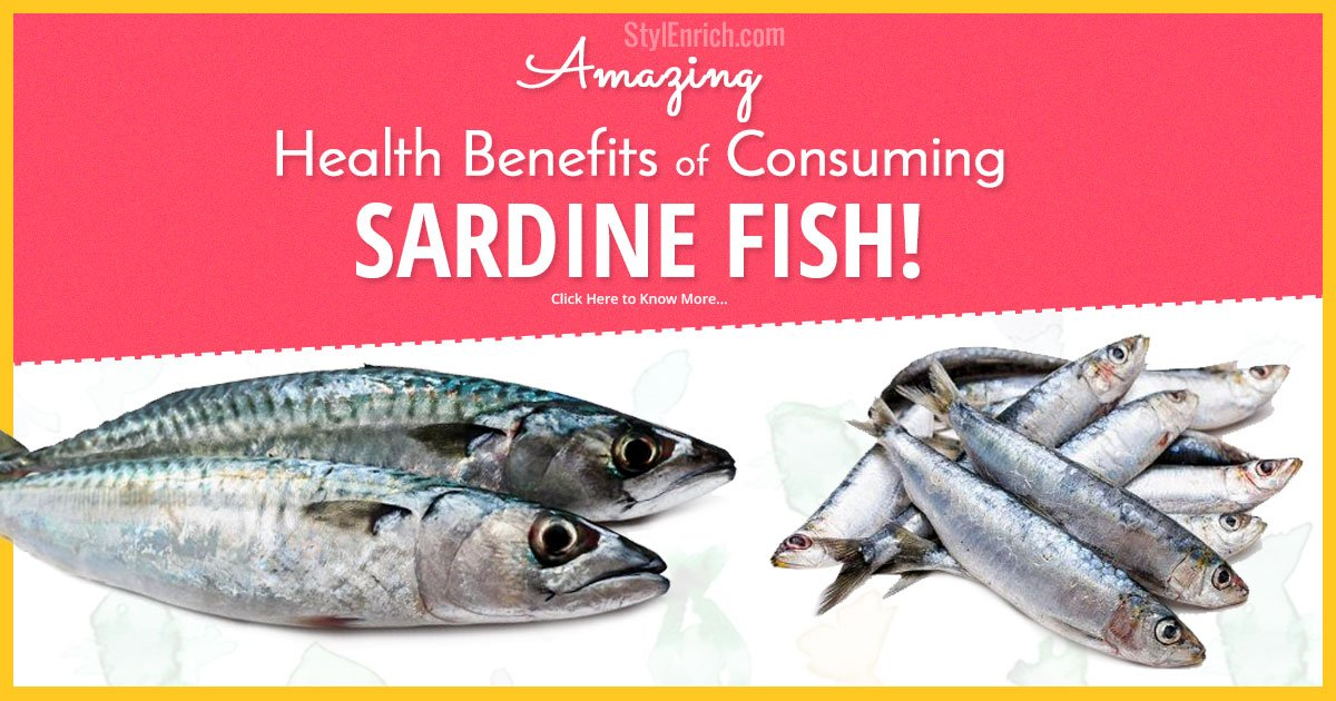 Sardines health benefits excellent food for non vegetarian for Health benefits of fish