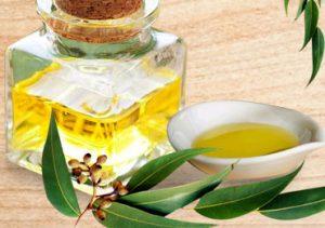 Benefits Of Eucalyptus Oil