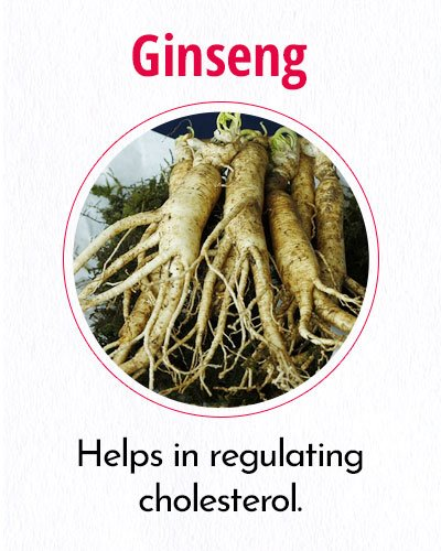 Ginseng For Weight Loss