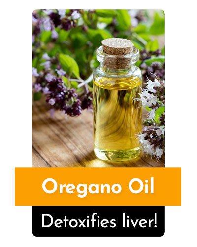 Oregano Oil Herb For Energy