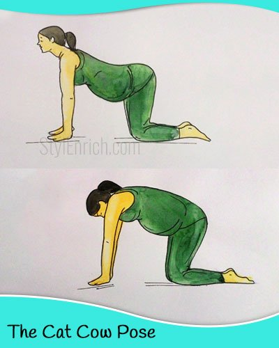 The cat cow yoga pose for pregnant women