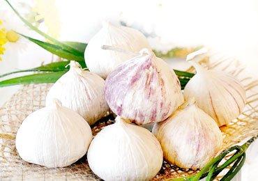 Health Values Of Having Garlic