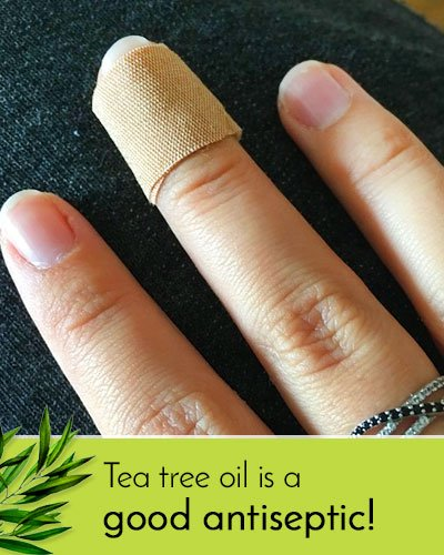 Tea Tree Oil Uses As Antiseptic