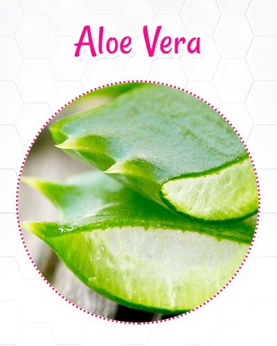 Aloe Vera For Reducing Wrinkles On The Neck