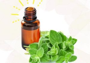 Benefits of Oregano Oil for Cold and Flu