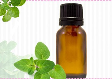 Oregano Essential Oil Benefits