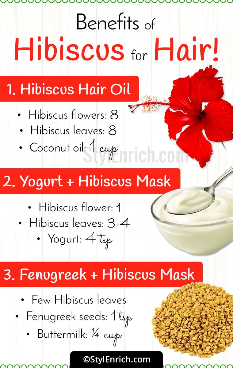 Hibiscus Flower And Coconut Oil For Hair Best Image Of Flower