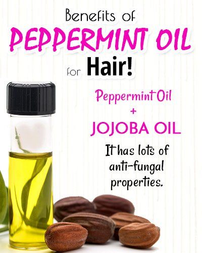 Peppermint and Jojoba Oil for Hair